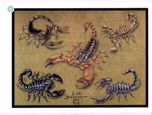 ... скорпиона 3. Эскизы татуировки скорп: rulib.binhoster.com/?c=13&p=risunki-tatushki-skorpion